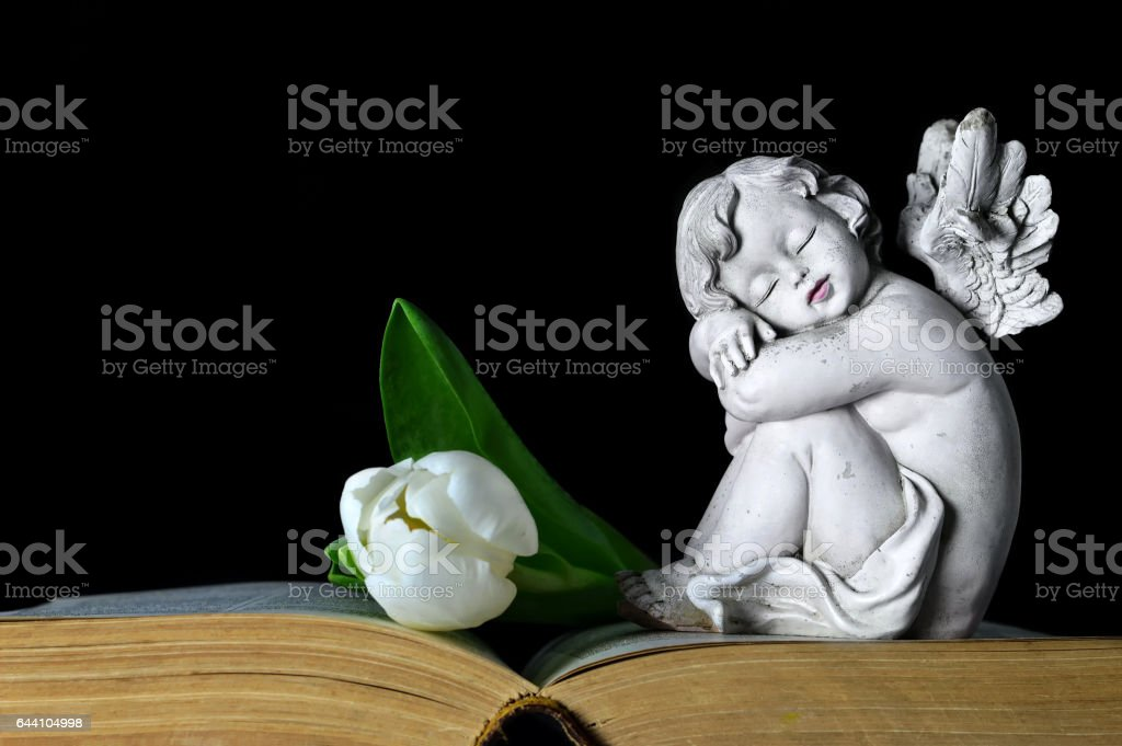 Angel and white tulip stock photo