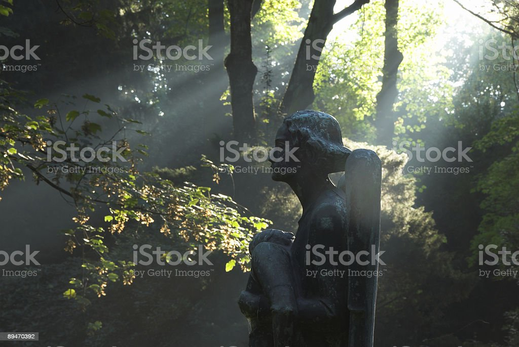 angel in autumn light stock photo