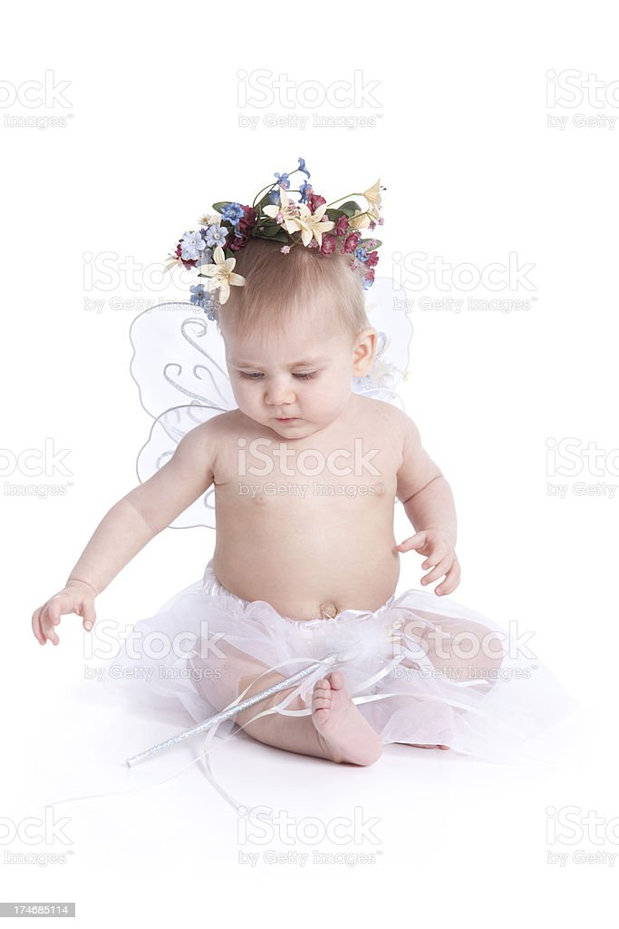 Angel or Fairy Baby with Wings Isolated on White royalty-free stock photo