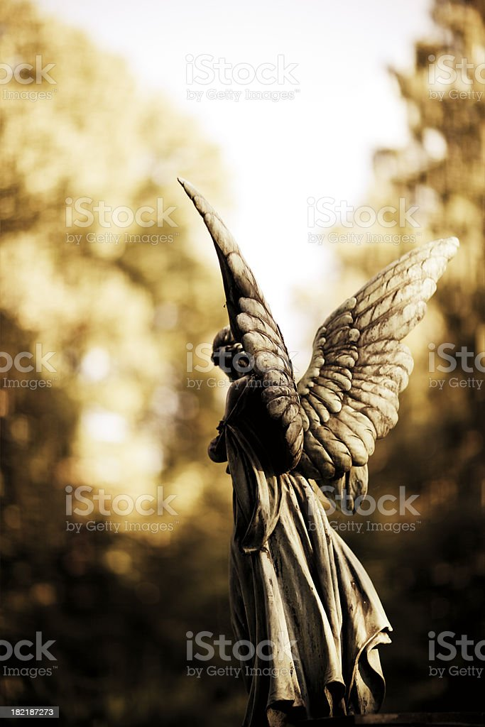 angel scupltue back royalty-free stock photo