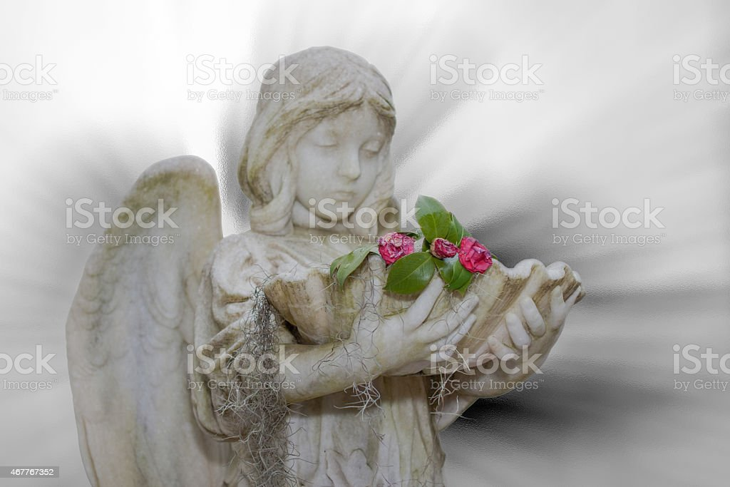 Angel Statue in Bonaventure Cemetery Holding Wilted Flowers stock photo
