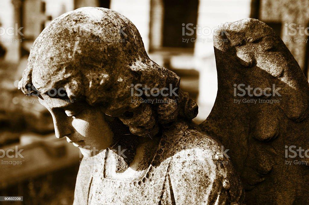 Angel study stock photo