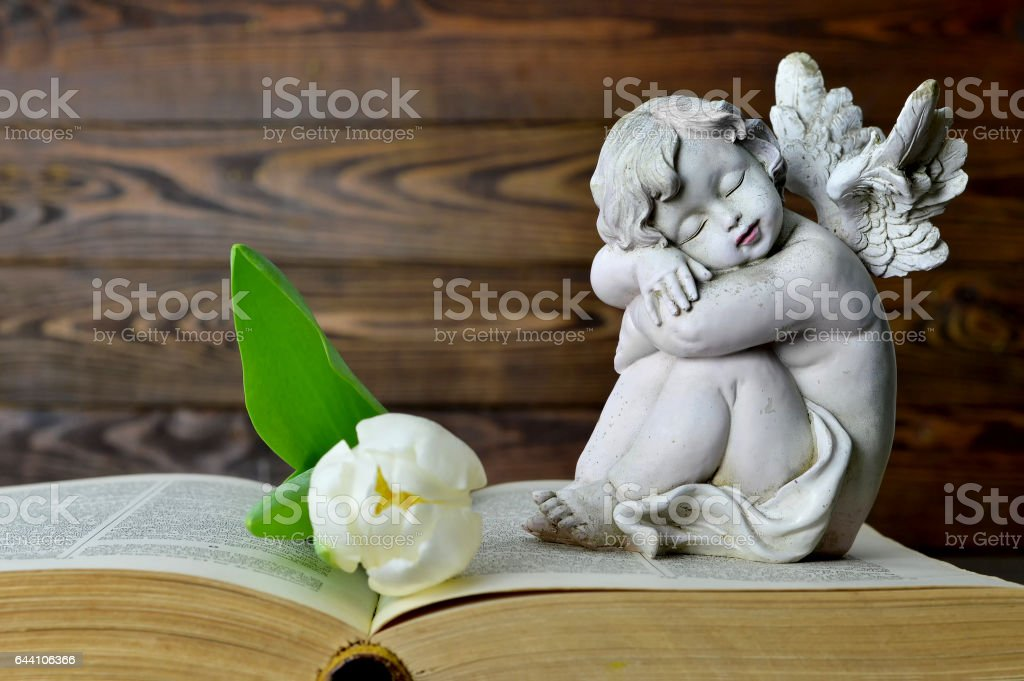 Angel, white tulip and old book stock photo