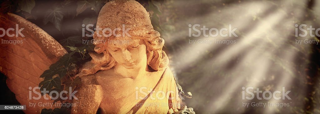 angel with wings stock photo