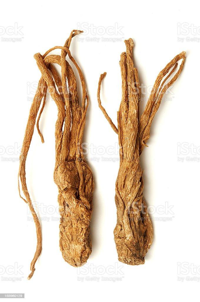 Angelica sinensis stock photo