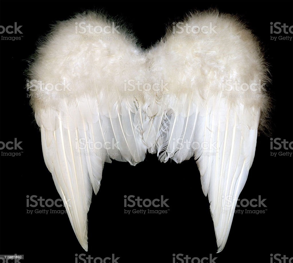 Angels Wings front view royalty-free stock photo