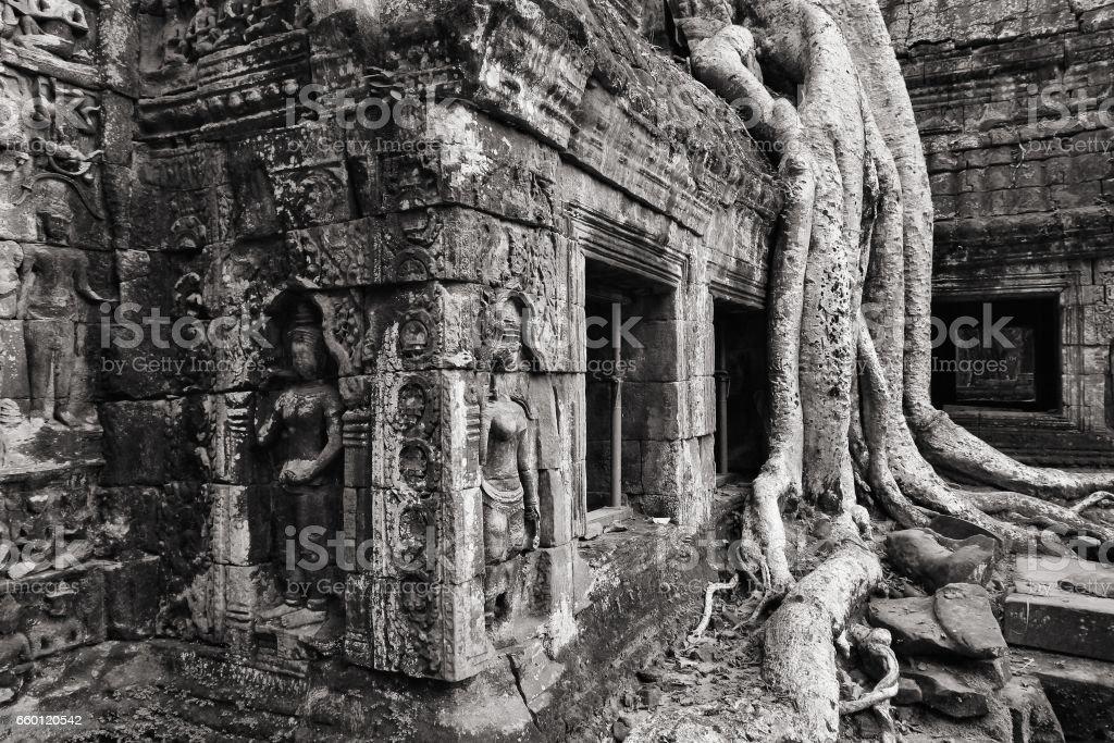 Angkor, Cambodia stock photo