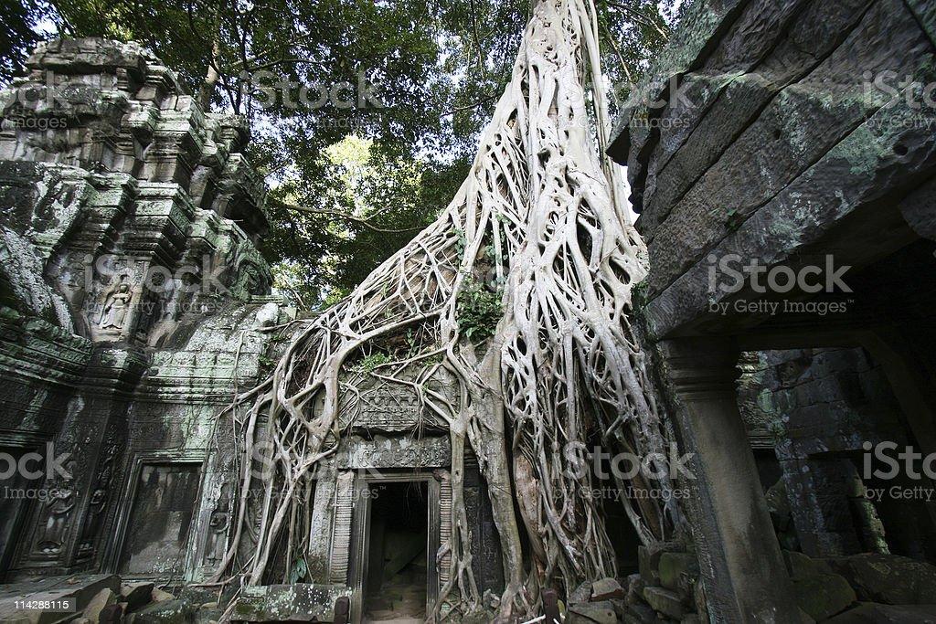 Angkor Wat Camobodia royalty-free stock photo