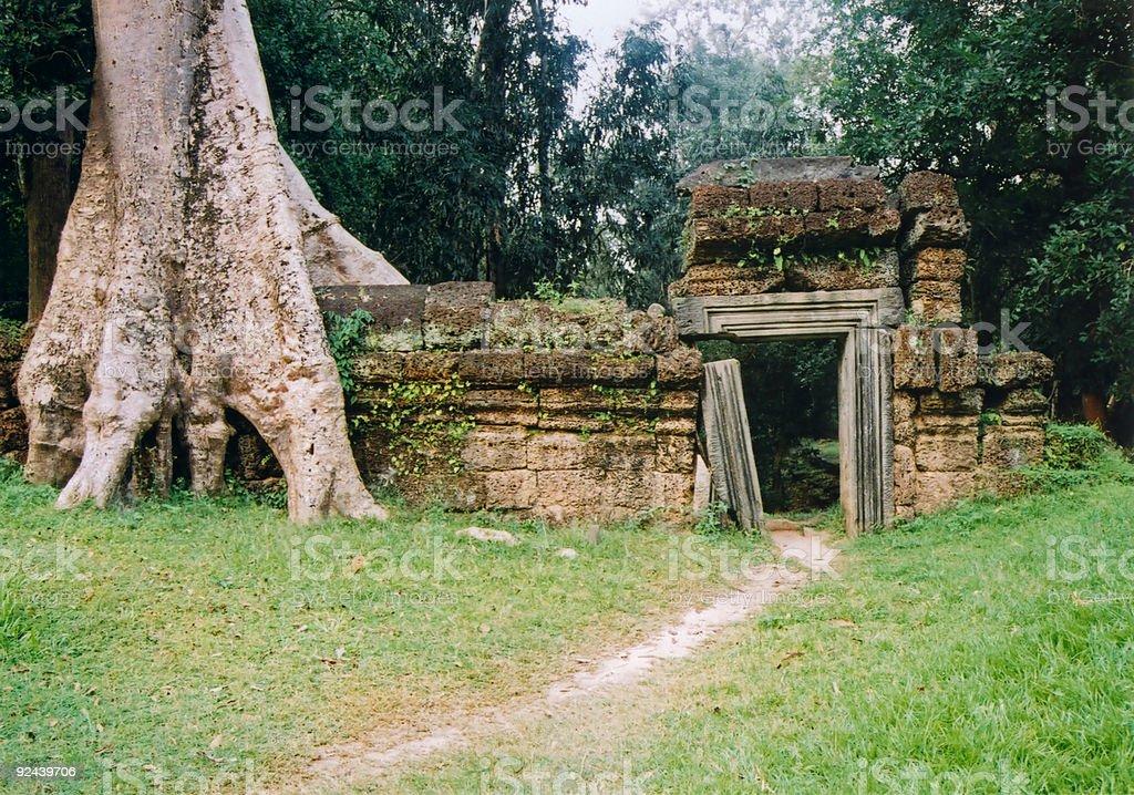 angkor wat  overgrown wall and gate royalty-free stock photo