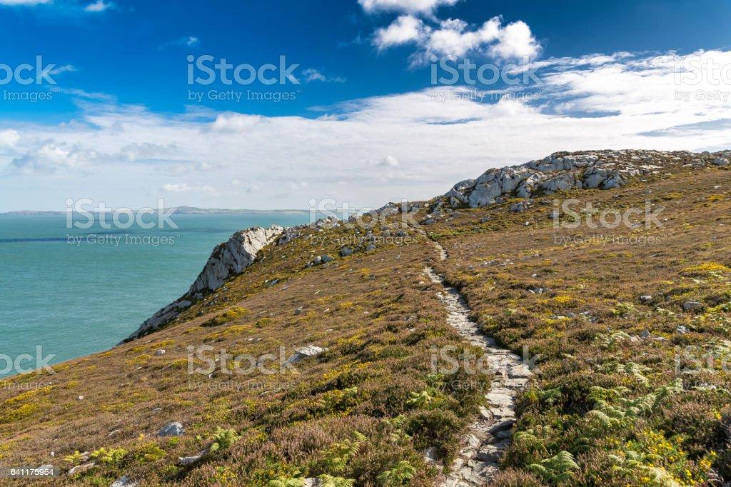 Anglesey coast and landscape, Wales, UK stock photo