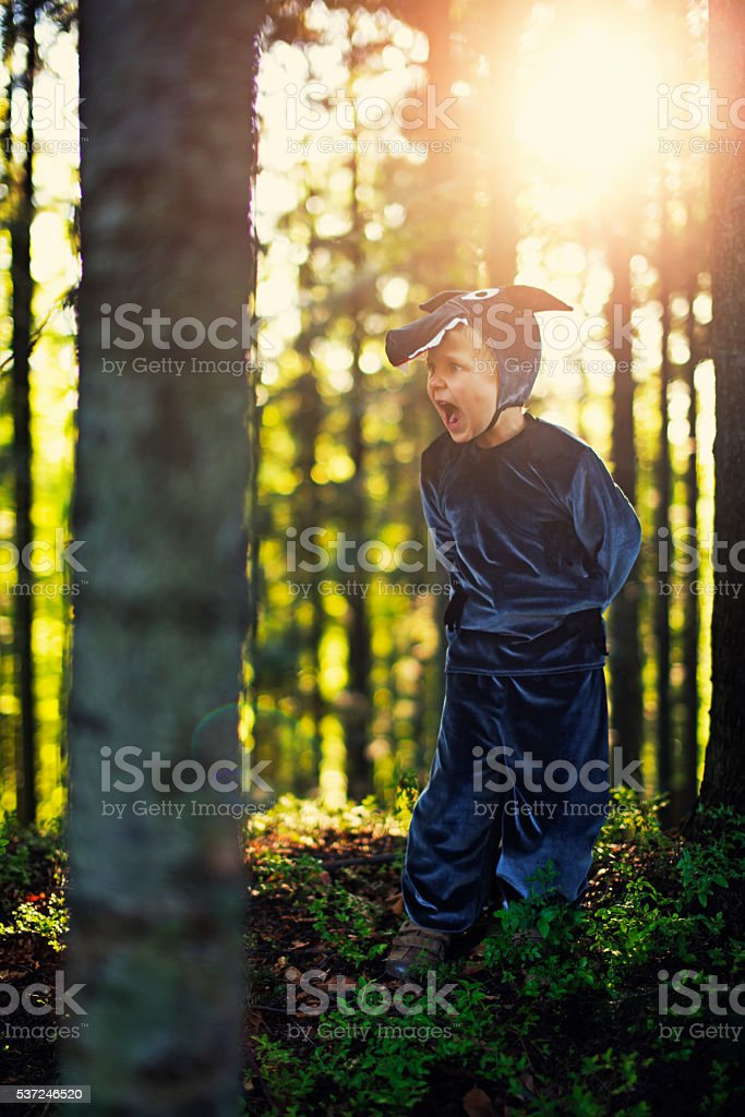 Angry Big Bad Wolf  looking for Little Red Riding Hood stock photo