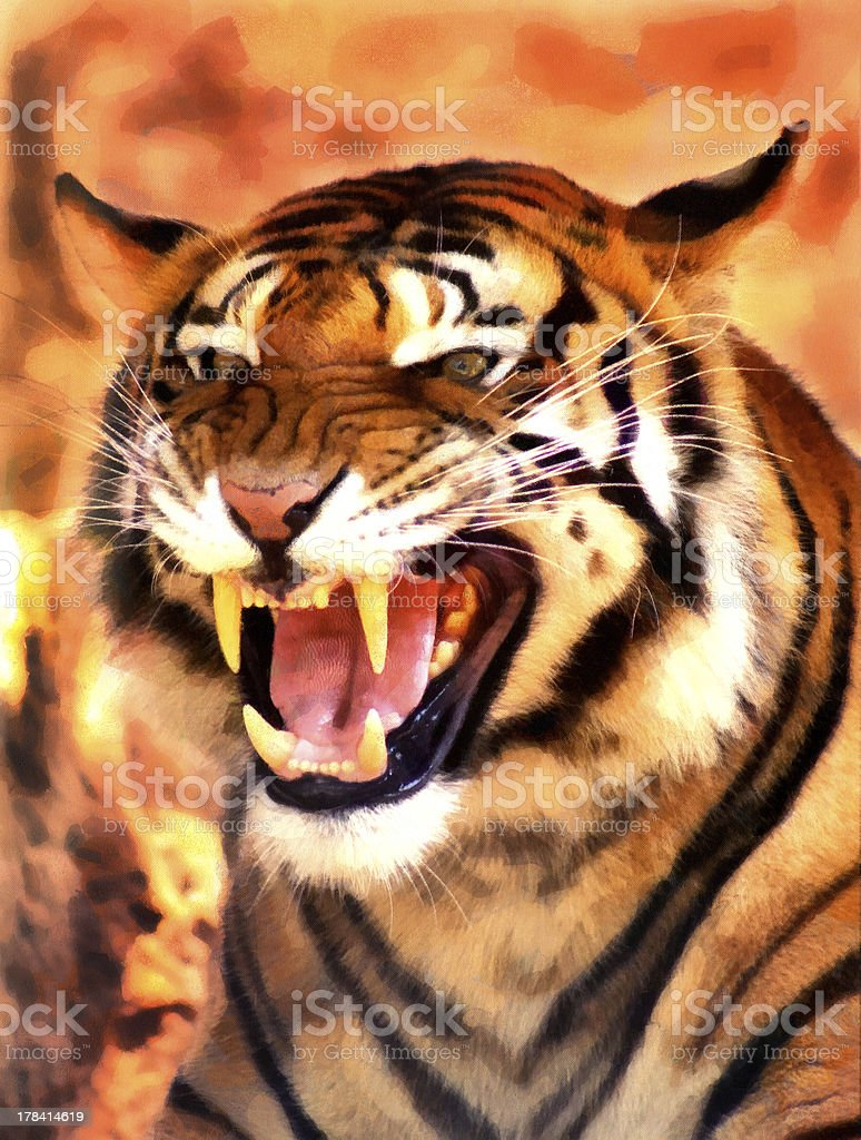 Angry Face Tiger Portrait Painting stock photo