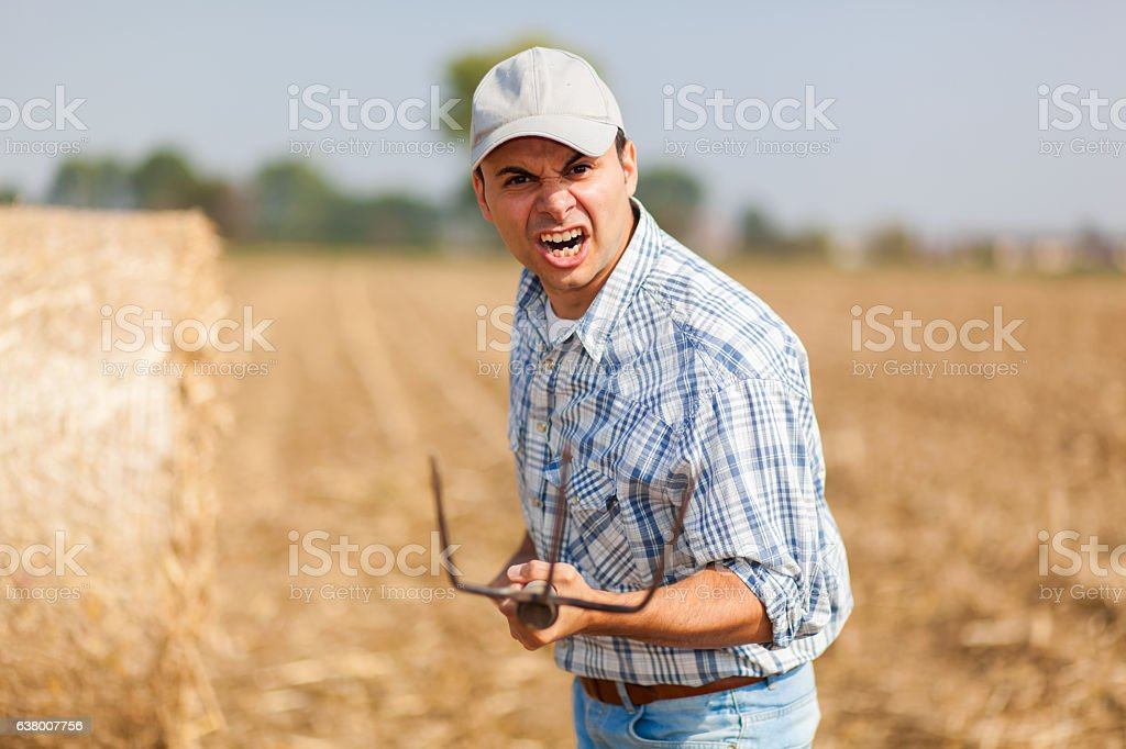 Angry farmer in a meadow stock photo