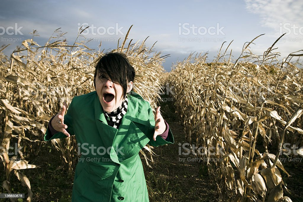 Angry in the middle of a field stock photo
