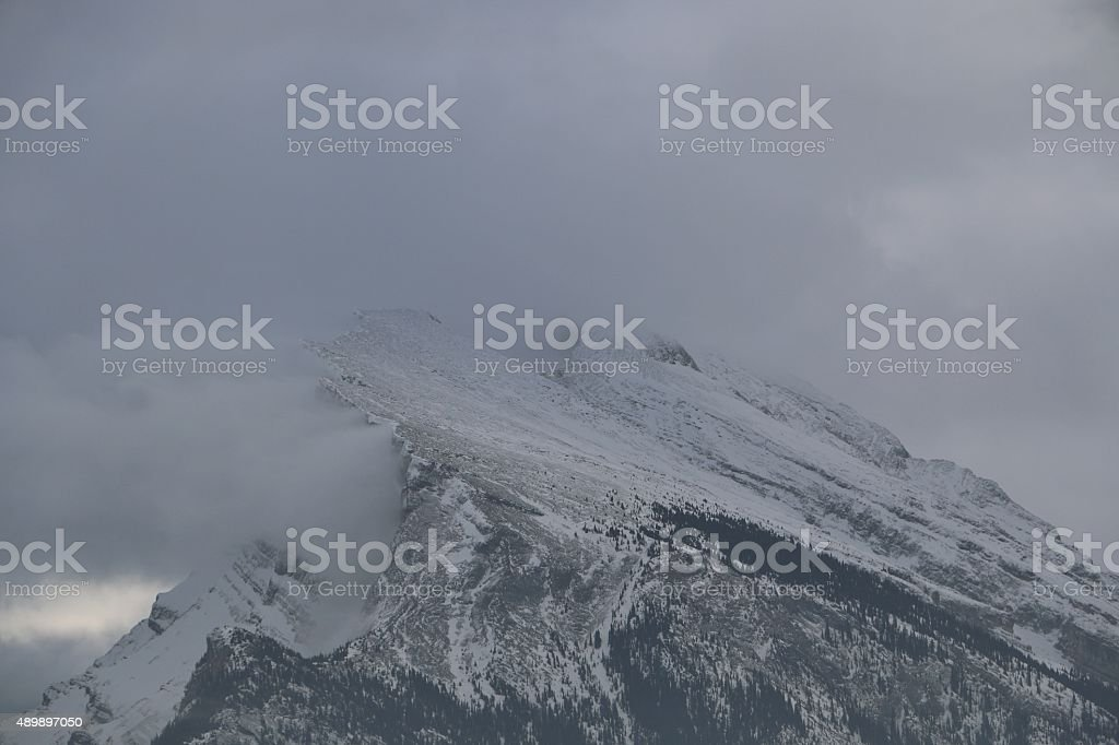 Angry Rundle stock photo
