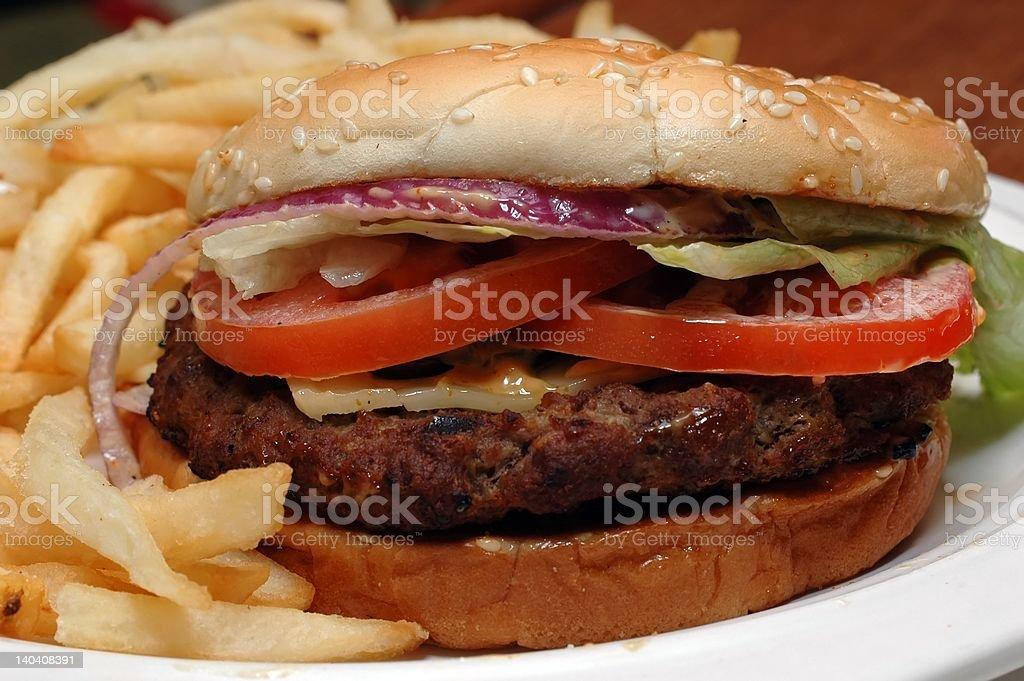 Angus Beef Hamburger and French Fries royalty-free stock photo