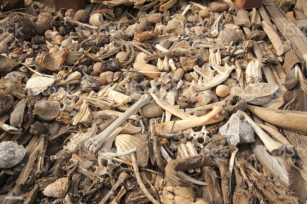 Animal bones at Akodessewa Voodoo Market in West Africa stock photo