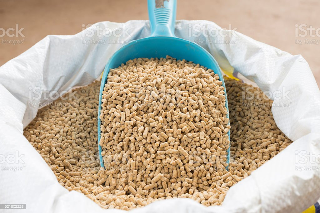 animal feed stock photo
