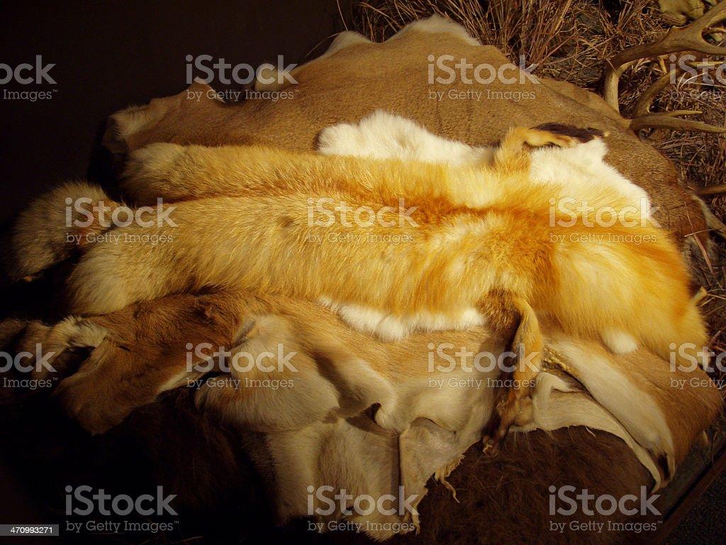Animal Hides - Fur royalty-free stock photo