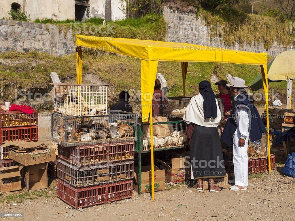 Animal Market, Otavalo, Ecuador royalty-free stock photo