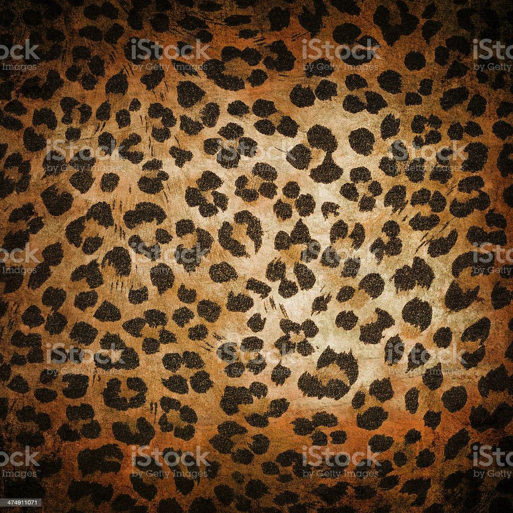 Animal pattern stock photo