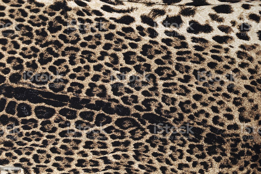 Animal Print background royalty-free stock photo
