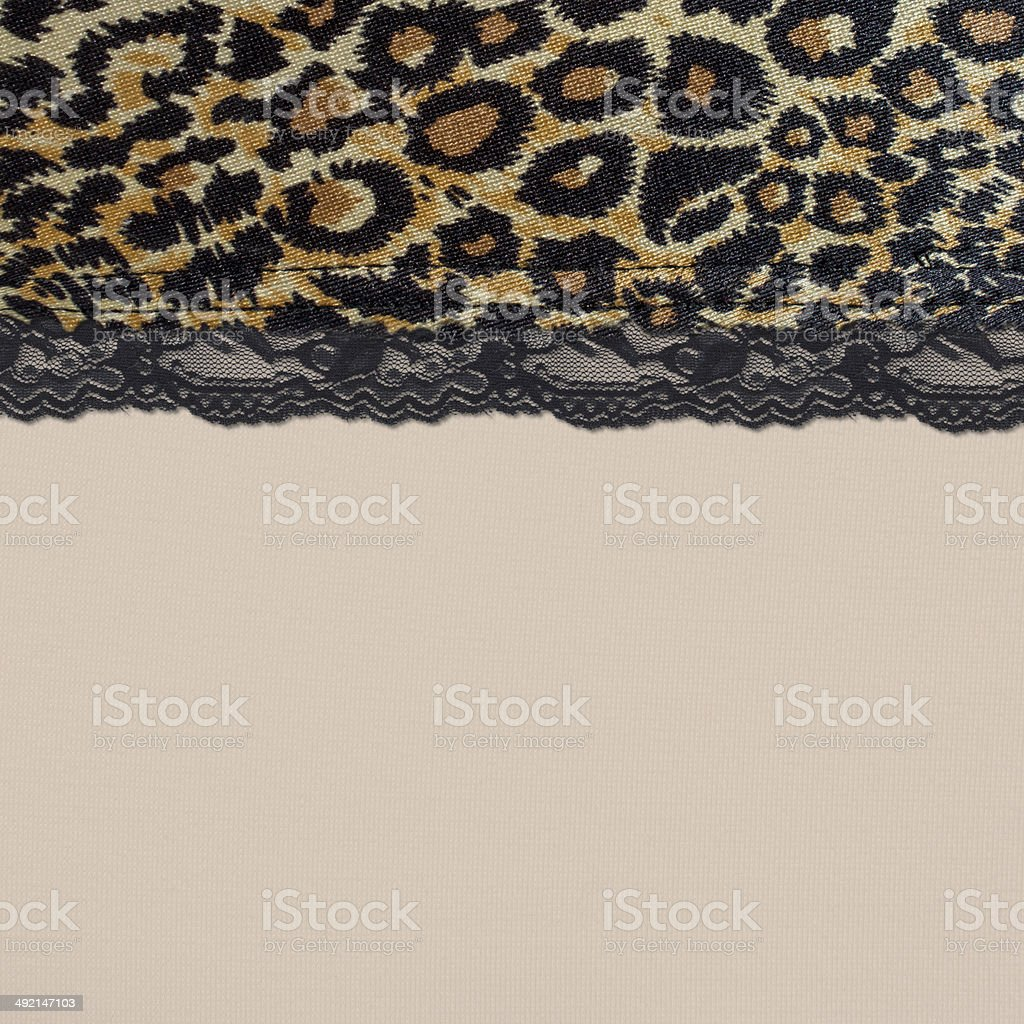 animal print lace mixpattern fashion trend royalty-free stock photo