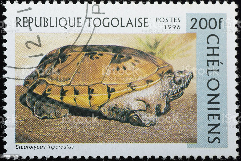 A stamp printed in REPUBLIQUE TOGOLAISE shows animal reptile turtle...