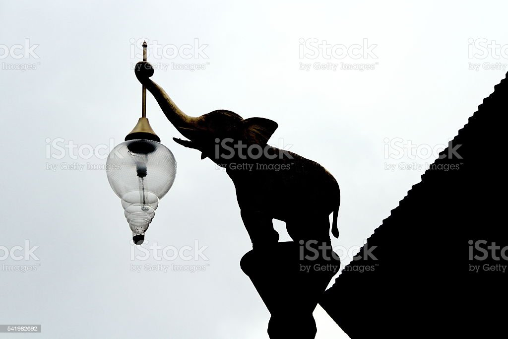 animal standing at center and hold lantern for give light stock photo