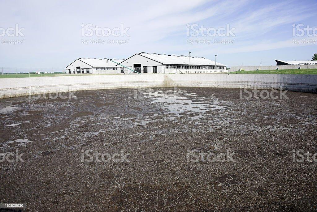 Animal waste lagoon on a modern dairy farm stock photo