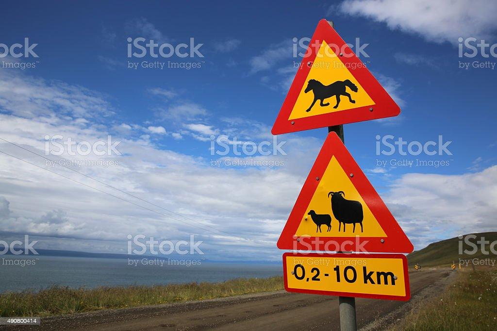 Animals Crossing stock photo