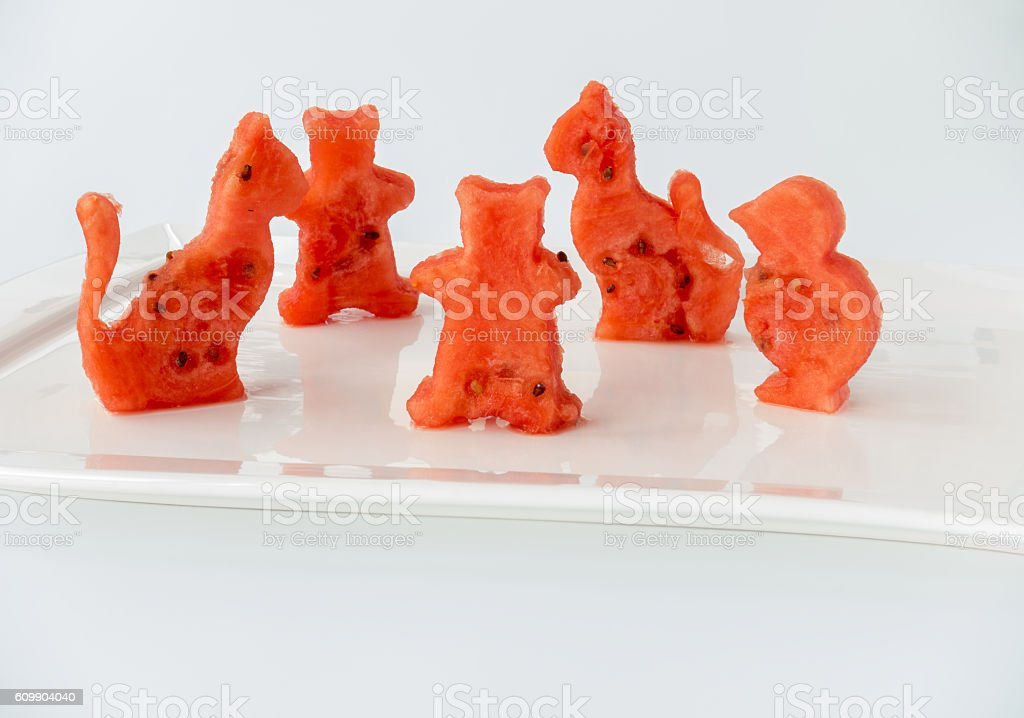 Animals cut out of Watermelon stock photo