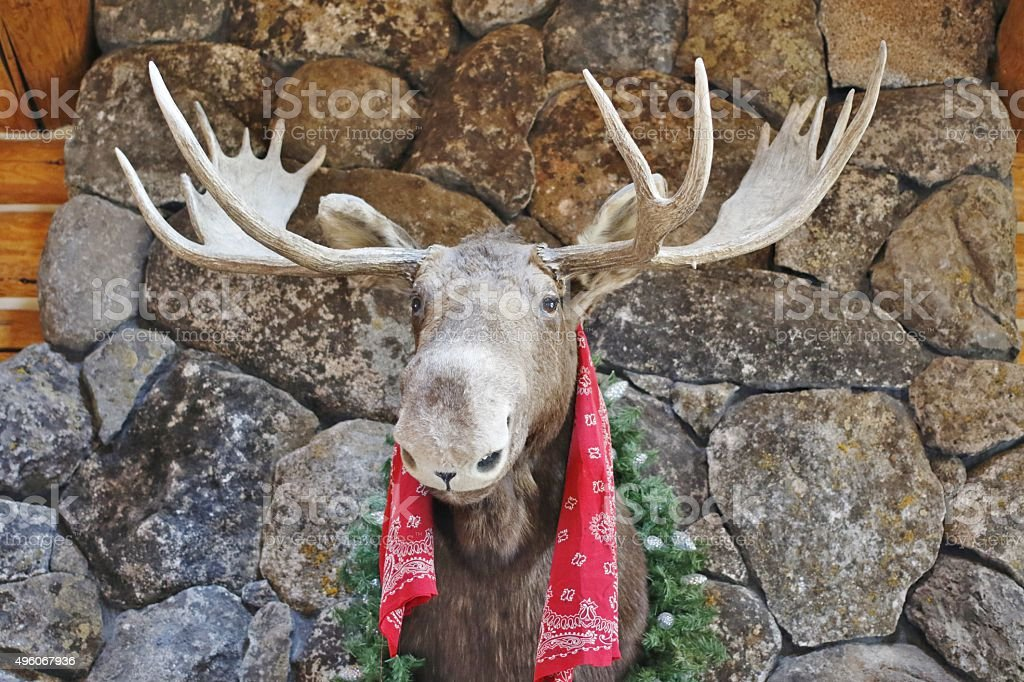 Animals: Moose head on fireplace stock photo