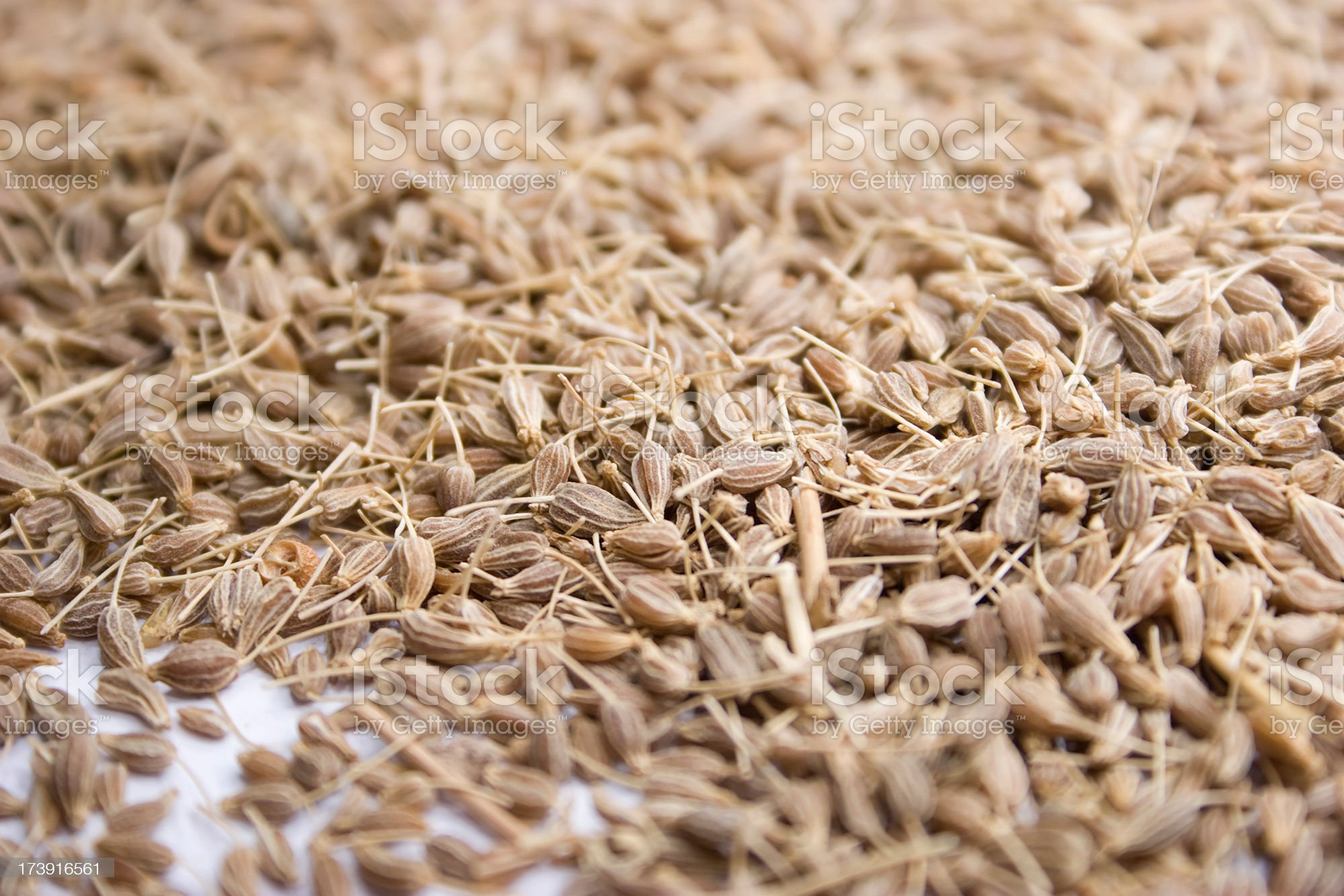 Anise seed royalty-free stock photo