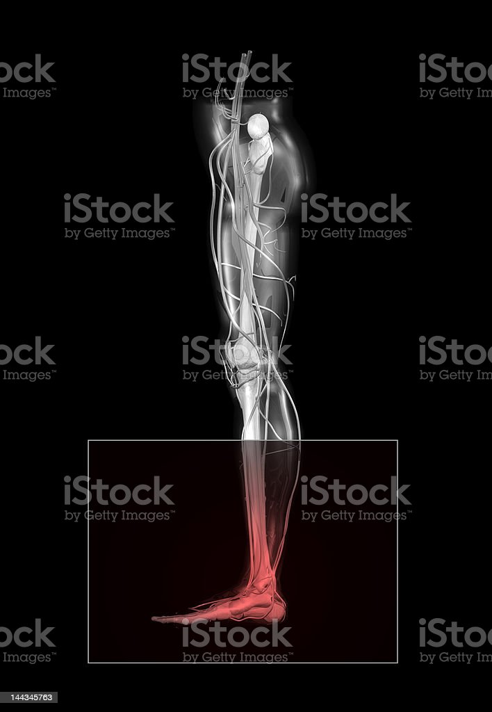 Ankle Pain royalty-free stock photo