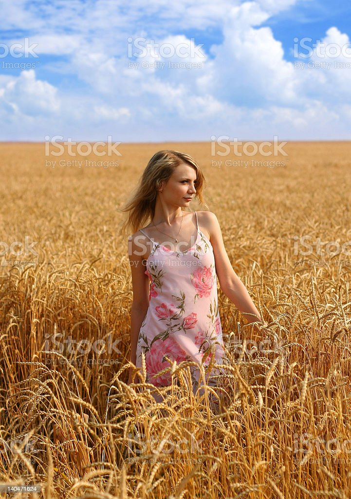 Anna in wheat field 1 royalty-free stock photo