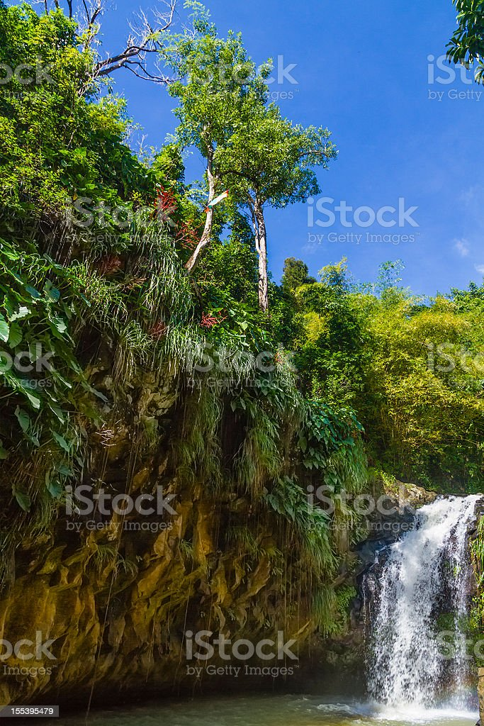 Annandale Falls, Grenada stock photo