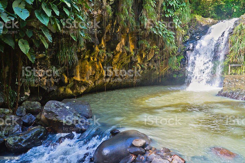 Annandale Falls, Grenada royalty-free stock photo