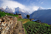 Annapurna mountain View from Ghnadruk Village Nepal