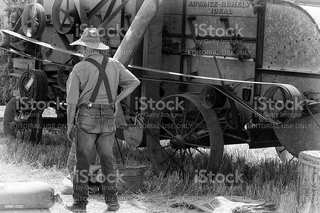 Annual Farm Harvest Festival in Yamhill County stock photo