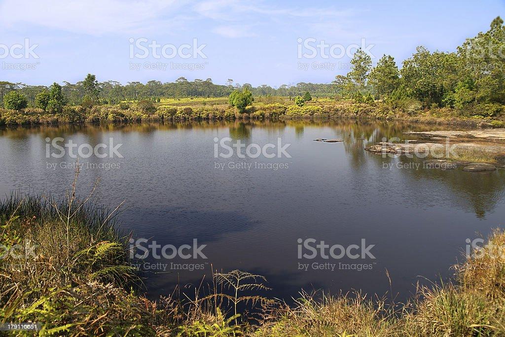 Ano Dard Pond - Phu Kradueng NP royalty-free stock photo