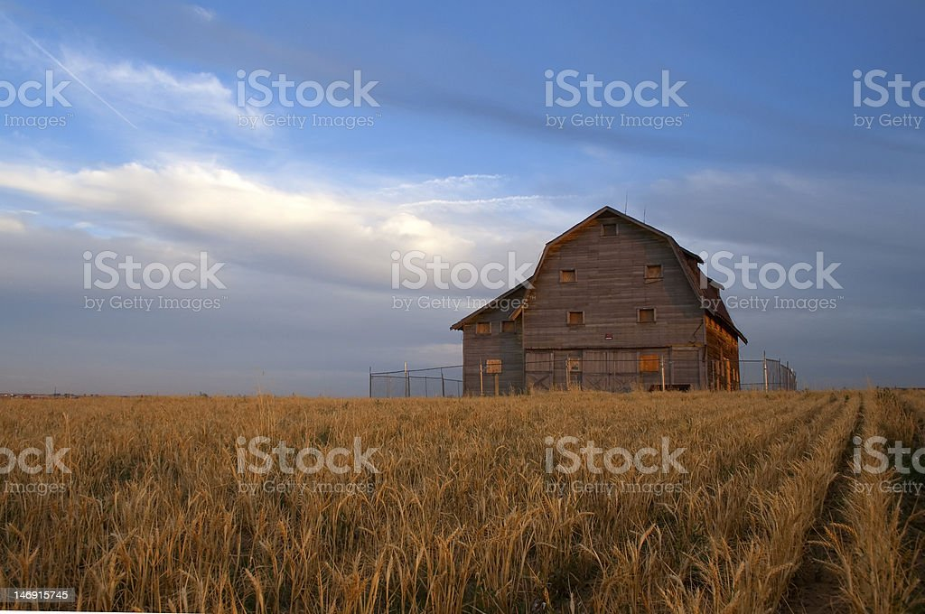 Another Day stock photo