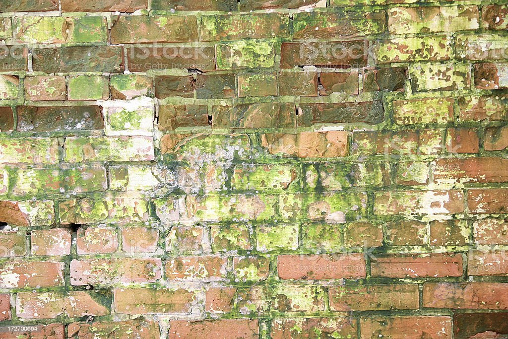 Another Decaying Brick in the Wall royalty-free stock photo