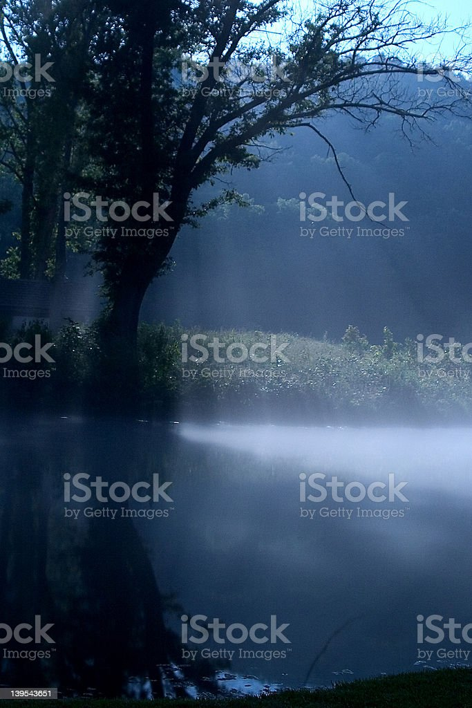 Another Foggy Night royalty-free stock photo