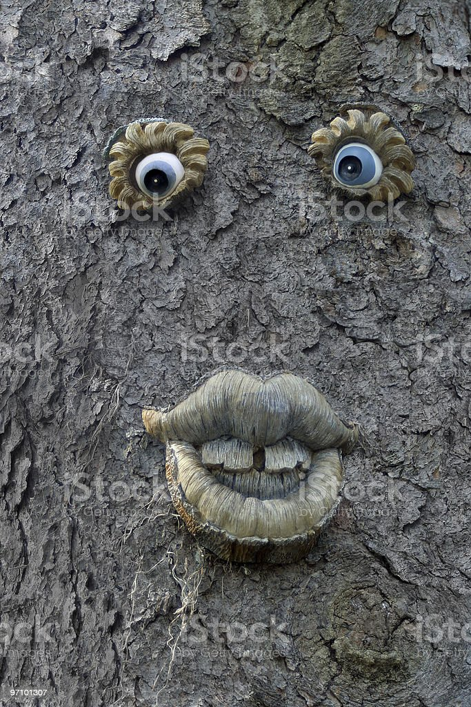 Another Old Tree Man royalty-free stock photo