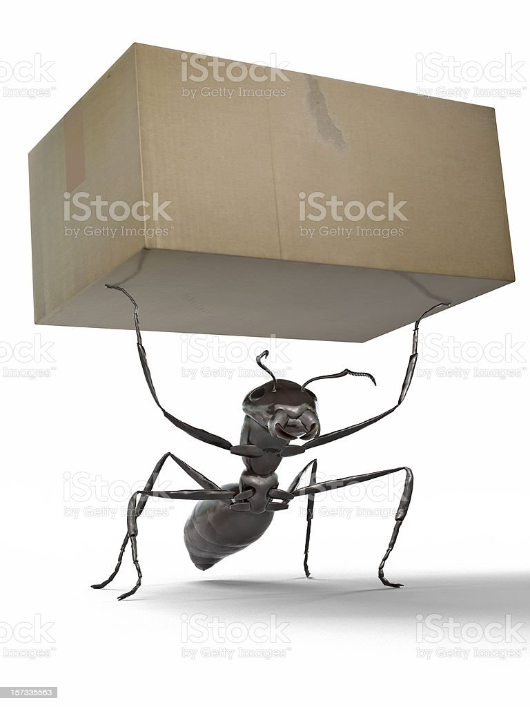 Ant Carrying a Box stock photo