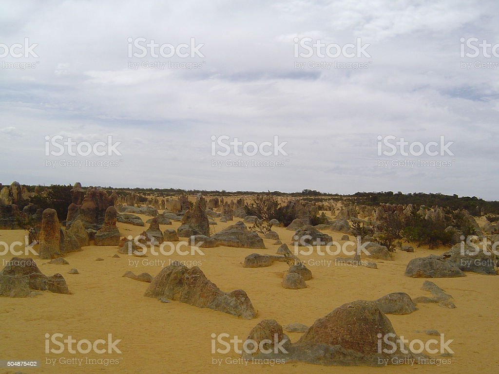 Ant hills supersized stock photo