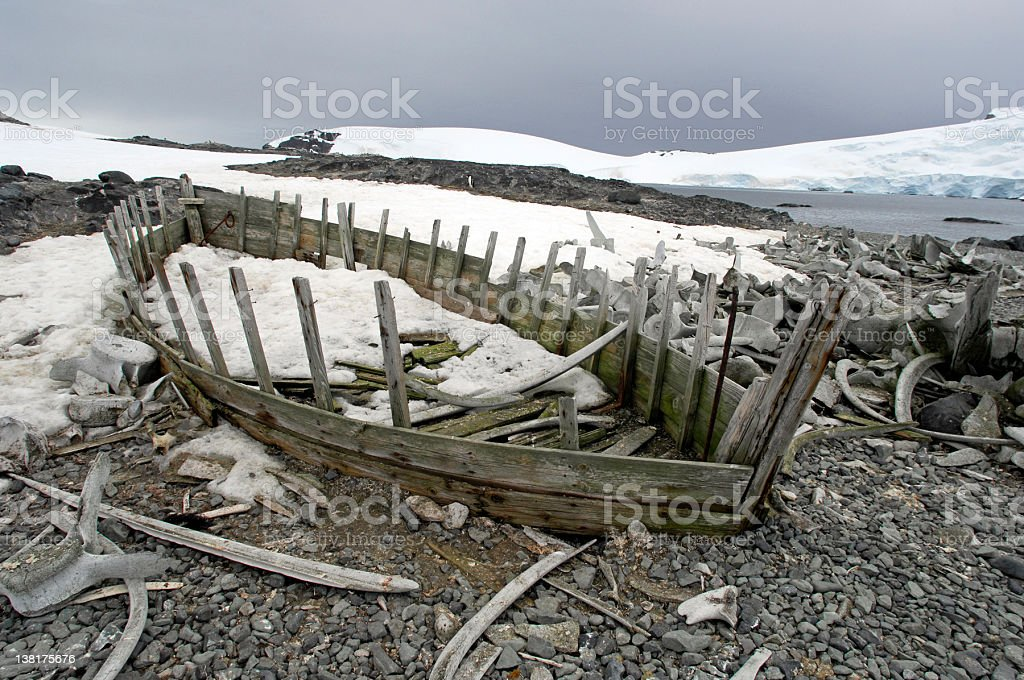 Antarctic Whaling Boat stock photo