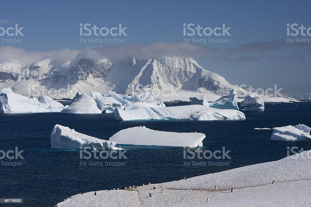 Antarctica, Cuverville Island royalty-free stock photo