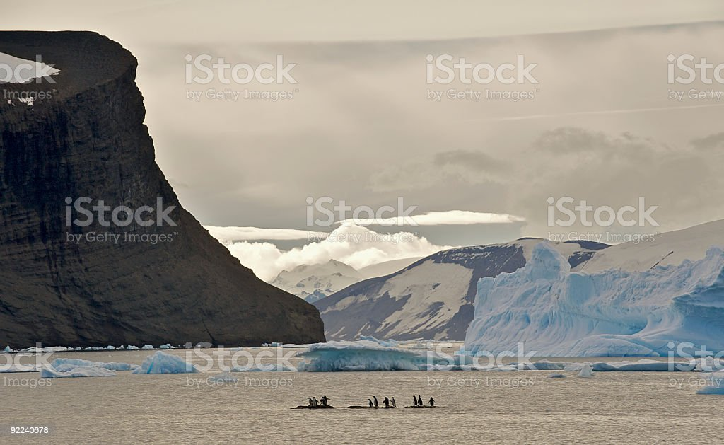 Antarctica Dusk with Penguins, Icebergs, Mountains stock photo